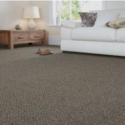 Quest Flashstone Max Carpet