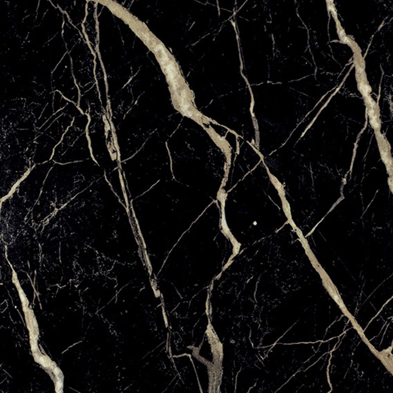 Nero Marquina Polished Porcelain Tile Western Distributors