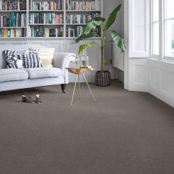 Mido Carpet design