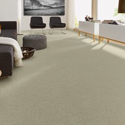 Feltex-Stonefields Carpets for flooring