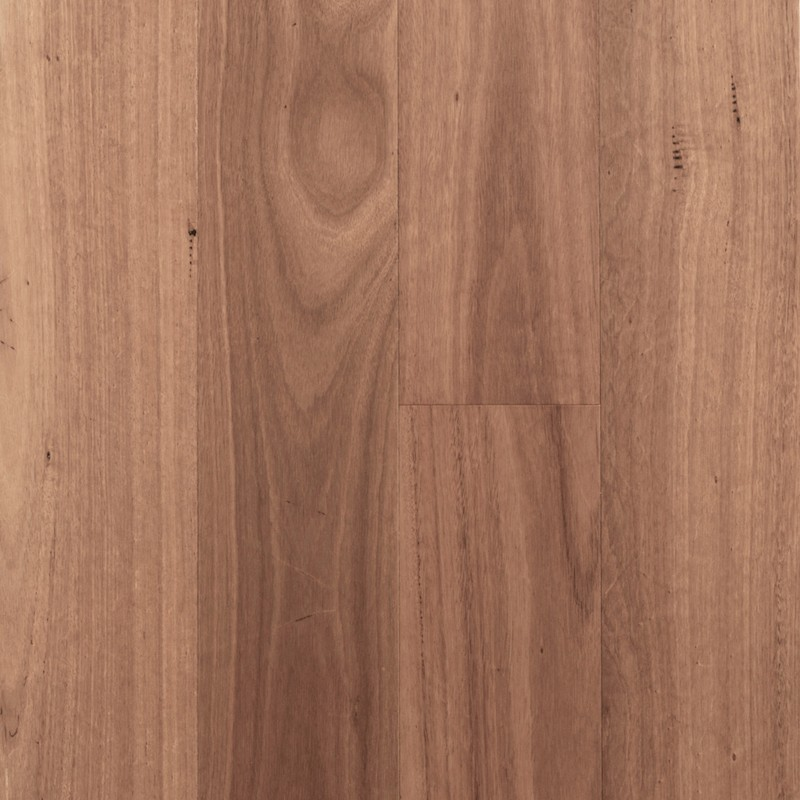 Regency Advanced Sydney Blue Gum Timber Veneer sample