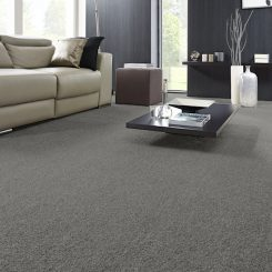 Unwind Flooring Carpet