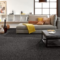 Heavenly Soft Carpet