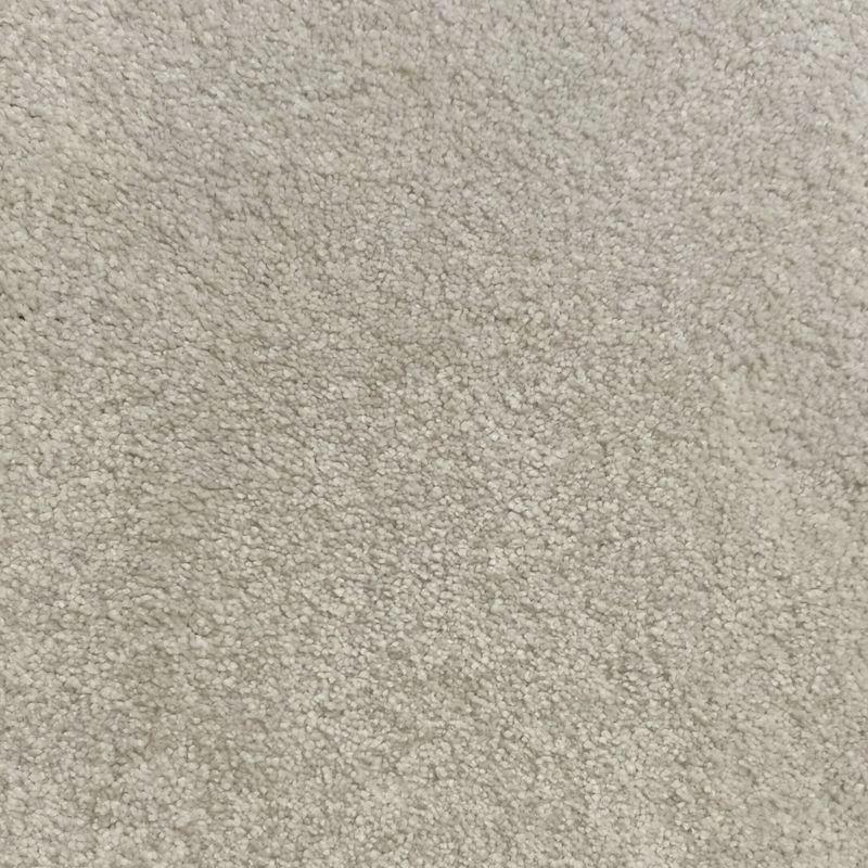 Scenic Carpets sample