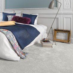 Soft Delight Carpets For Room