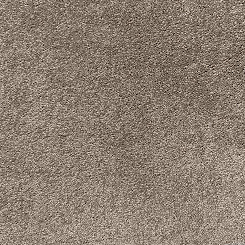 Timeless Almond Carpet sample