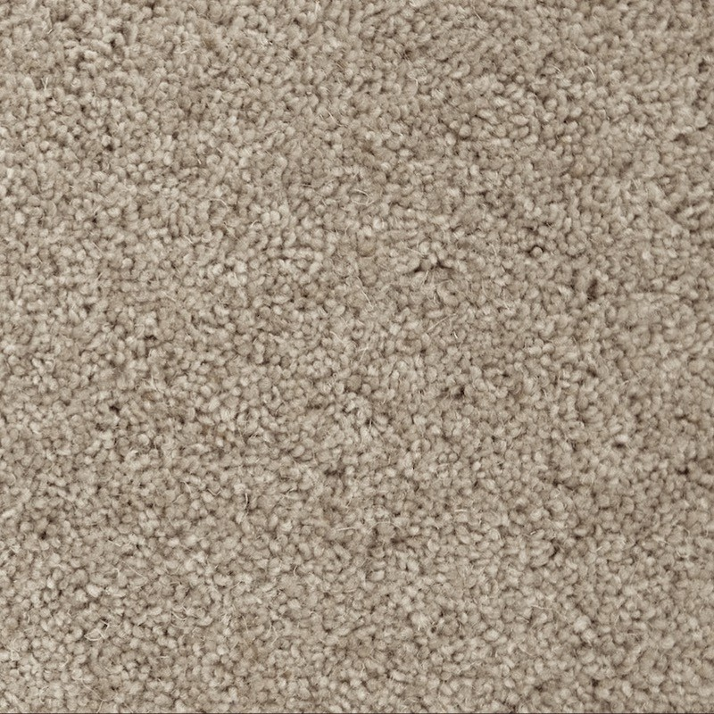 Venus Valley Carpet sample