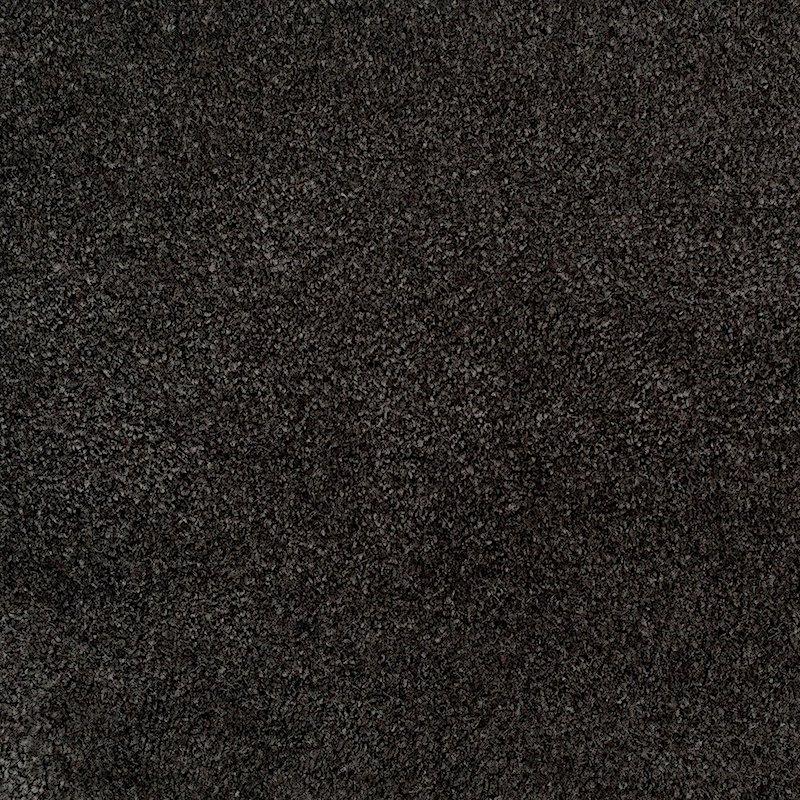 Soft Appeal 991 Carpet sample