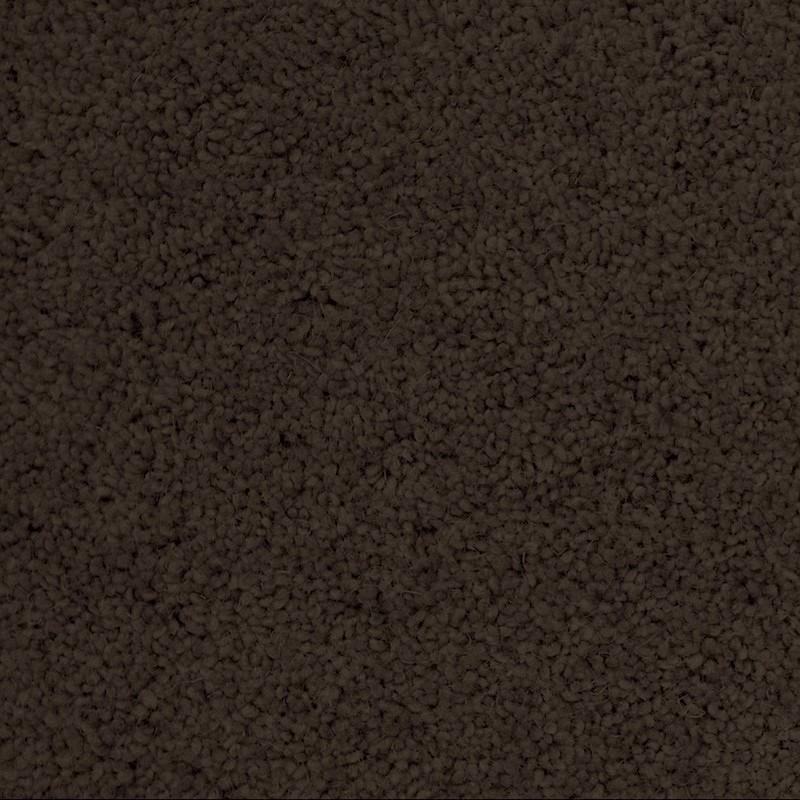 Soft Touch 1950 Carpet sample